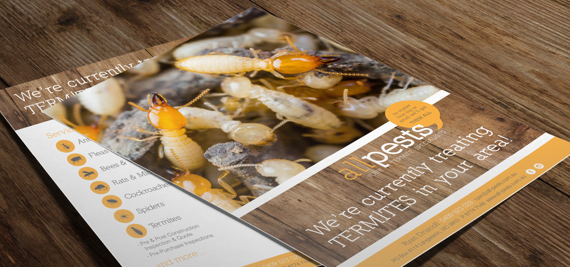 flyer design mornington all pests