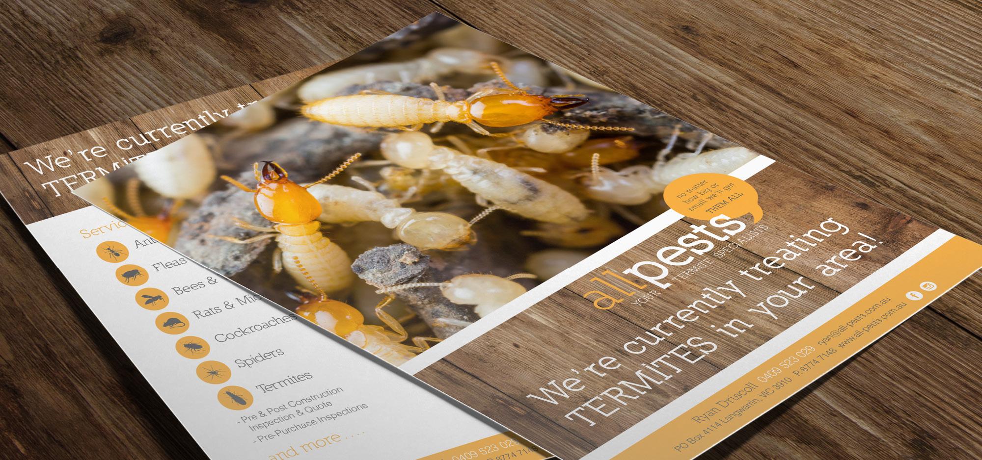 flyer design mornington all pests