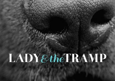 Lady and The Tramp Branding | Website | Signage