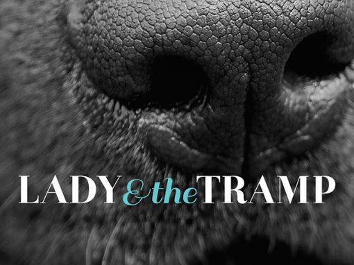 Lady and The Tramp Branding