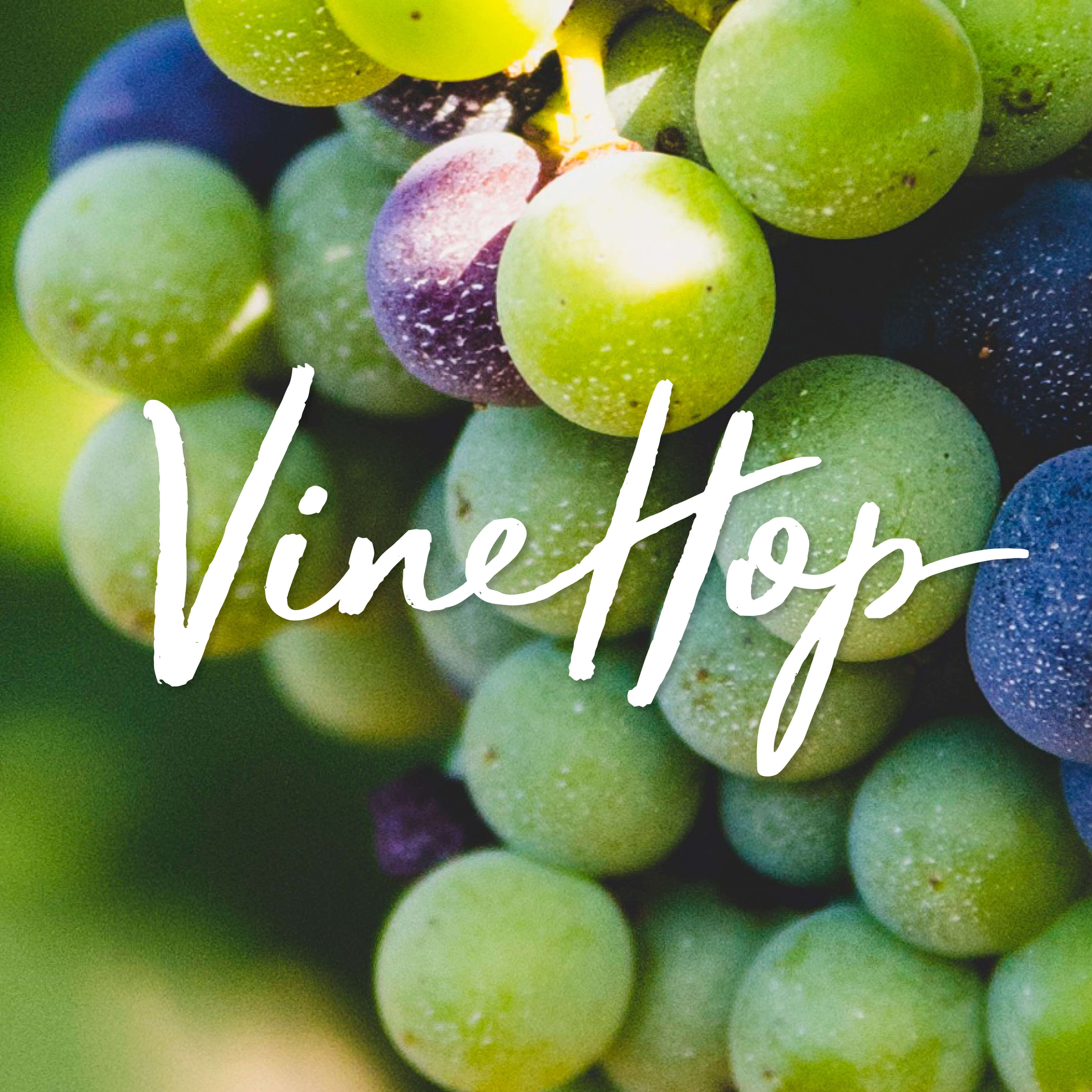 VineHope Festival Mornington Peninsula Branding