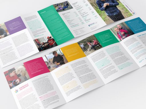Focus Life | Annual Report