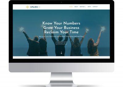 Spark CFO
